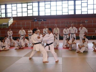 Кумитэ демонстрация Kansho братьями и Kanyu Uechi