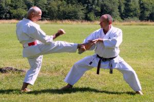 le-karate