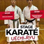 Stage Kansho Uechi 2019 Parijs